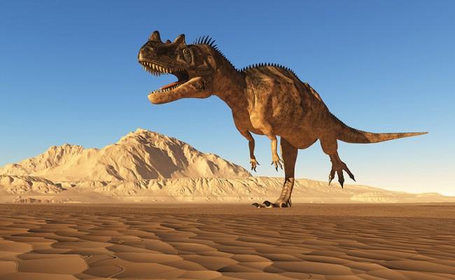 The dinosaur