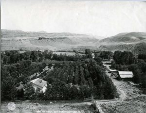black and white image of an apple orchard with a white building in the foreground and a narrow road going to the right leading to another structure with a white roof